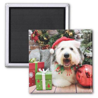 Navidad - perro pastor inglés viejo - Alphy Iman Para Frigorífico