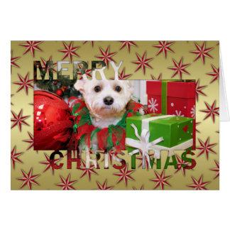Navidad Photocard de Schnoodle
