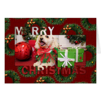 Navidad Photocard de Shih Tzu