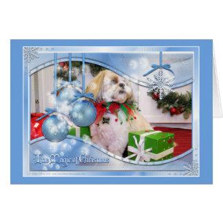 Navidad Photocard de Shih Tzu Felicitacion