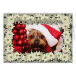 Navidad Photocard de Yorkshire Terrier Felicitaciones