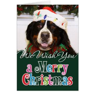 Navidad Photocard del perro de montaña de Bernese Tarjeton