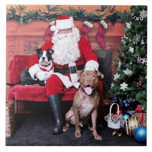 Navidad - Pitbulls - Mia y Lucian Azulejo Cuadrado Grande