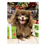 Navidad - Pomeranian - Fred Postal