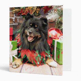 Navidad - Pomeranian - Gucci