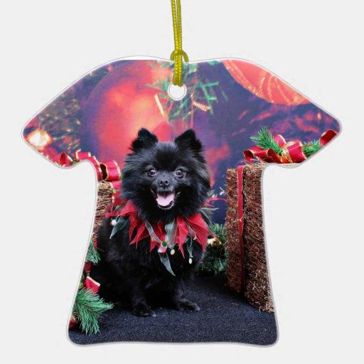 Navidad - Pomeranian - Mazie Ornamentos De Reyes