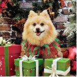 Navidad - Pomeranian - Sammy Escultura Fotografica