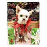 Navidad - Pomeranian X - margarita Postal