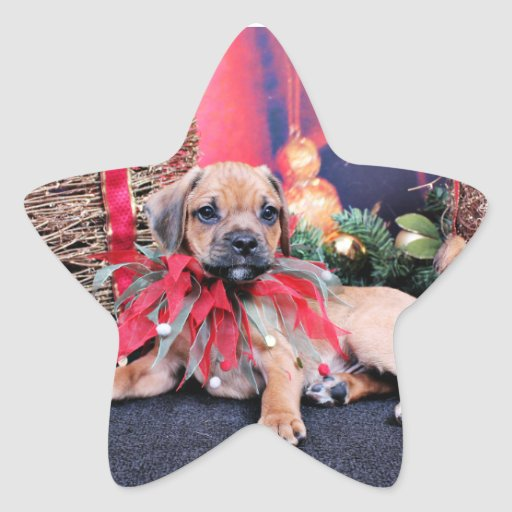 Navidad - Puggle - Gus Pegatina En Forma De Estrella