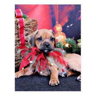 Navidad - Puggle - Gus Postal