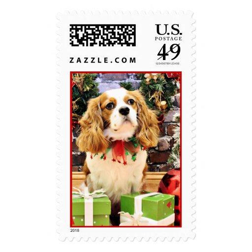 Navidad - rebelde arrogante del perro de aguas de sellos postales