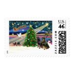 Navidad Rottweilers mágico (dos)