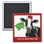 ¡Navidad rry del MOO! Vaca divertida del día de fi Imán Cuadrado