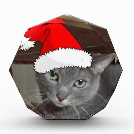Navidad ruso del gato azul
