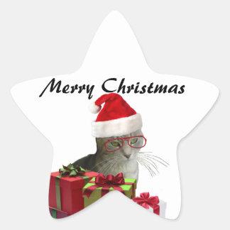 Navidad sabio de moda divertido del gato de Santa Pegatina En Forma De Estrella