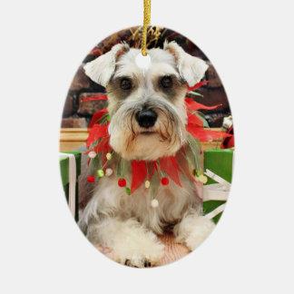 Navidad - Schnauzer - Abby
