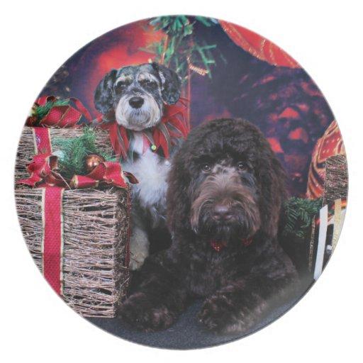 Navidad - Schnauzer Apache - Bowen LabraDoodle Platos De Comidas