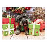 Navidad - Schnoodle - Dexter Tarjeta Postal