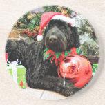 Navidad - Schnoodle - Zeus Posavasos Personalizados
