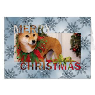 Navidad - Shiba Inu Photocard Tarjeton