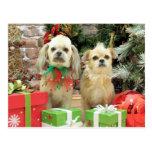 Navidad - Shih Tzu - Sr. T y Terrier X - lirio Postal