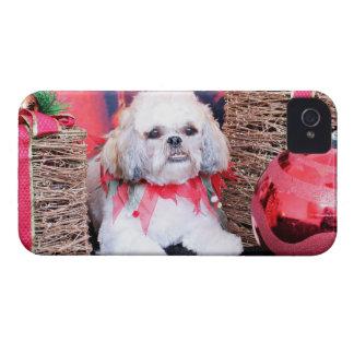 Navidad - Shih Tzu - Wrigley iPhone 4 Cobertura