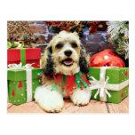 Navidad - Shih Tzu X - Baxter Postal