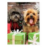 Navidad - Shih Tzu X Maggie - duendecillo de Yorki Postales