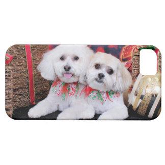 Navidad - Shihchon - Poochon - Newman y Wrigley iPhone 5 Case-Mate Coberturas