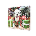 Navidad - ShihPoo - Lucy Lona Envuelta Para Galerías