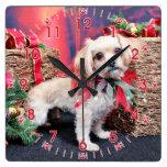 Navidad - Shorkie - Charlie Relojes