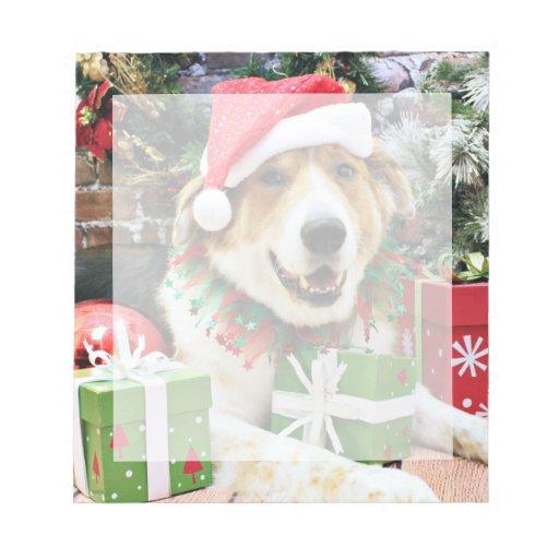 Navidad - St Bernard Aussie X - Bailey Blocs De Papel