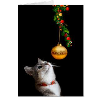Navidad tentado del gato del gatito tarjeta de felicitación