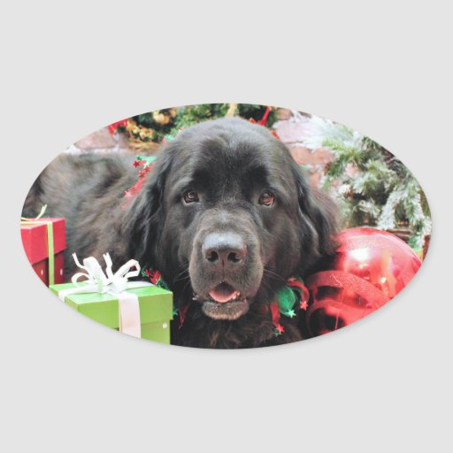 Navidad - Terranova - Izzie Pegatina Ovalada