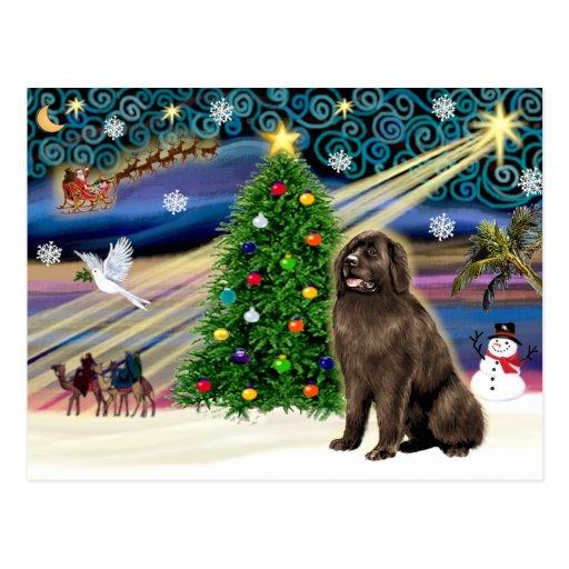 Navidad Terranova mágico (marrón) Postales
