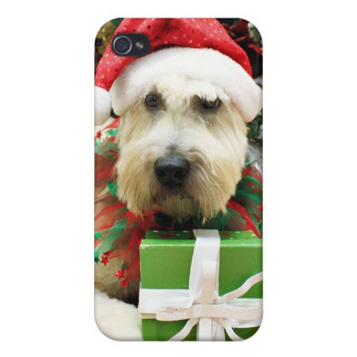 Navidad - Terrier de trigo - Bailey iPhone 4 Carcasa