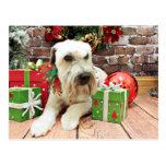 Navidad - Terrier de trigo - irlandés Postal