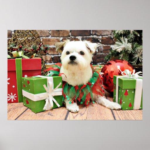 Navidad - Terrier X - Anko Póster