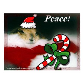 Navidad trapezoidal del perro de las praderas tarjetas postales