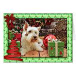 Navidad - Westie - Bailey