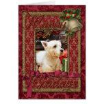 Navidad - Westie - Callie