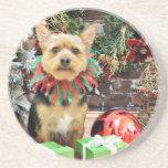 Navidad - Yorki X - poco pedazo Posavasos Personalizados
