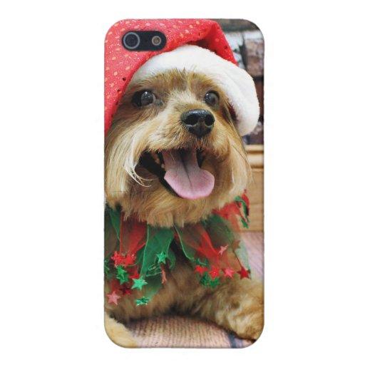 Navidad - Yorkie - Jack iPhone 5 Protector