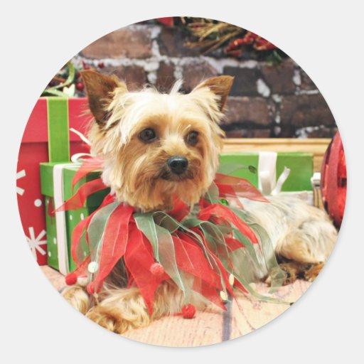 Navidad - Yorkie - Kinsey Etiqueta Redonda