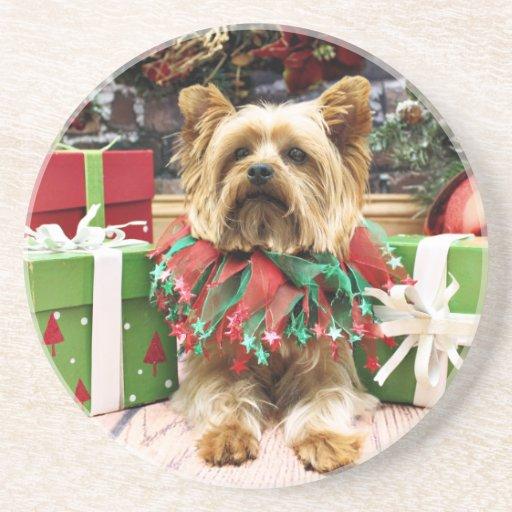 Navidad - Yorkie - máximo Posavasos De Arenisca