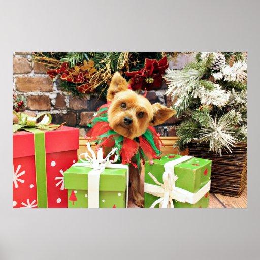 Navidad - Yorkie - peluche Póster
