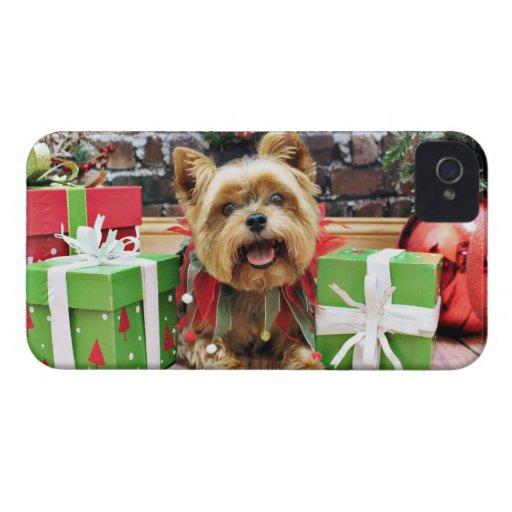 Navidad - Yorkie - soleado Case-Mate iPhone 4 Protector