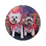 Navidad - Yorkie - Zoe y Dori Jarrones De Dulces