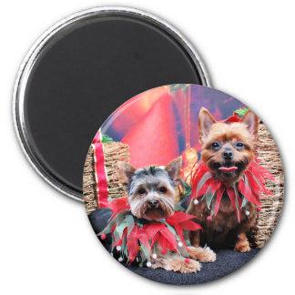 Navidad - Yorkshire Terrier - Chloe y Rocky Imanes Para Frigoríficos