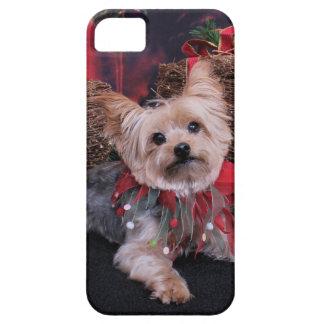 Navidad - Yorkshire Terrier - Vinnie iPhone 5 Carcasas